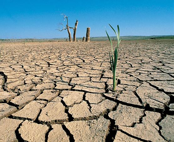 ONU lanza plan para ayudar a Centroamérica a enfrentar sequía