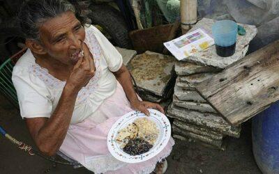 ONU prevé más hambre en Centroamérica y pide políticas para enfrentarla