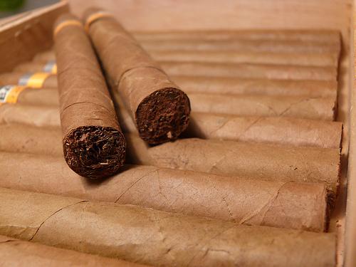 Industria del tabaco en Nicaragua espera crecer 6% en plantaciones