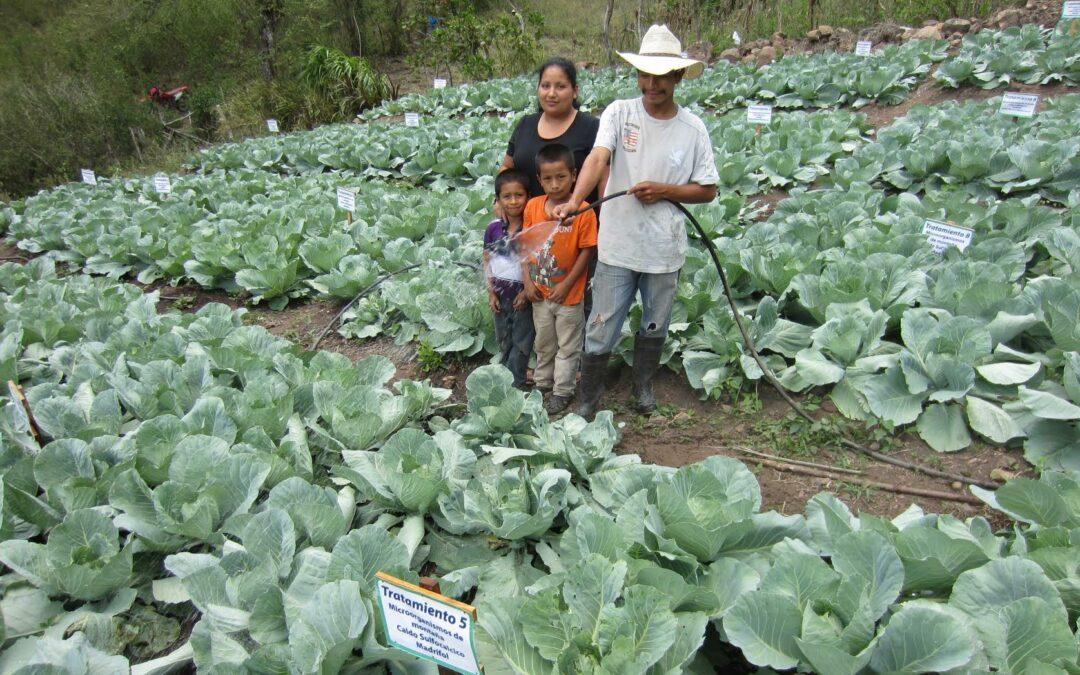 Honduras: Invertirán 50 millones de euros en proyectos de riego