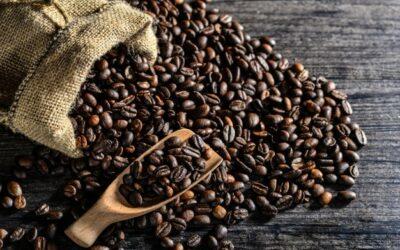 El 70 % de los cafés que exporta El Salvador son especiales y llegan hasta Singapur