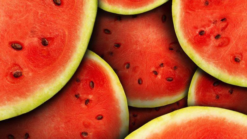 Costa Rica exportó, por primera vez, melón y sandía orgánicos a Europa