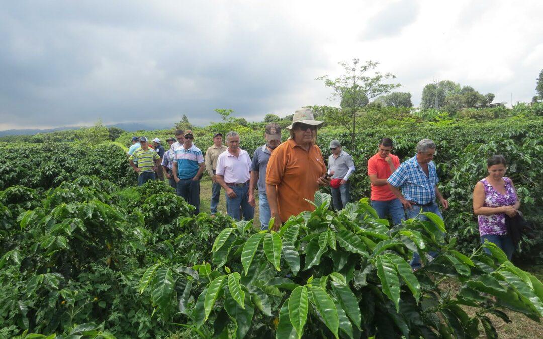 Urge fortalecer agricultura del Caribe para producir más alimentos, conectarse con el turismo y reducir importaciones