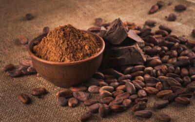 Cacao de Costa Rica se abre oportunidades como insumo para la industria alimentaria