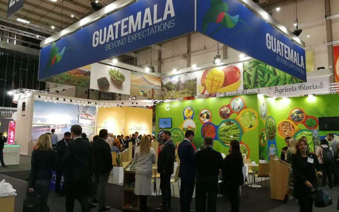Consumidores de Países Bajos, Italia y Reino Unido gustan de productos frescos de Guatemala