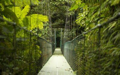 Costa Rica: Nuevo ministro de Turismo priorizará 3 ejes de acción para enfrentar la crisis del sector