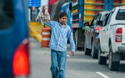 Pandemia agudizará el trabajo infantil