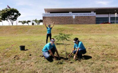 Costa Rica: Aeropuerto de Guanacaste realiza acciones de reforestación en sus inmediaciones