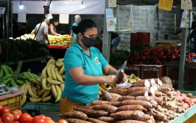 Promueven la comercialización y digitalización del comercio agrícola en Costa Rica