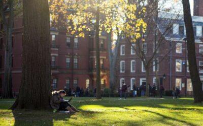 EE.UU cancelará visas a estudiantes extranjeros con clases en línea