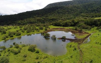 Estrategia ESCALL busca impulsar sistemas de siembra y cosecha de agua de lluvia en Costa Rica