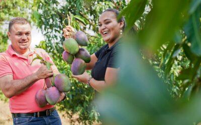 Oferta exportable costarricense se promueve virtualmente en más de 45 países