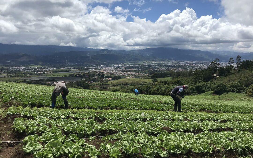 Inseguridad alimentaria en Honduras casi se ha duplicado, según la ONU
