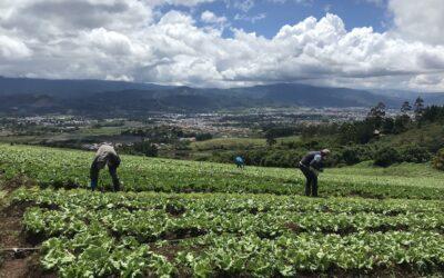 2050 implementa modelo único en Costa Rica a nivel industrial y comercial de economía circular