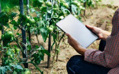 Estos son los grandes desafíos de la agricultura que viene