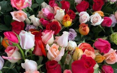 Guatemala: Sector de flores y ornamentales floreció y creció 3% en sus exportaciones 2020