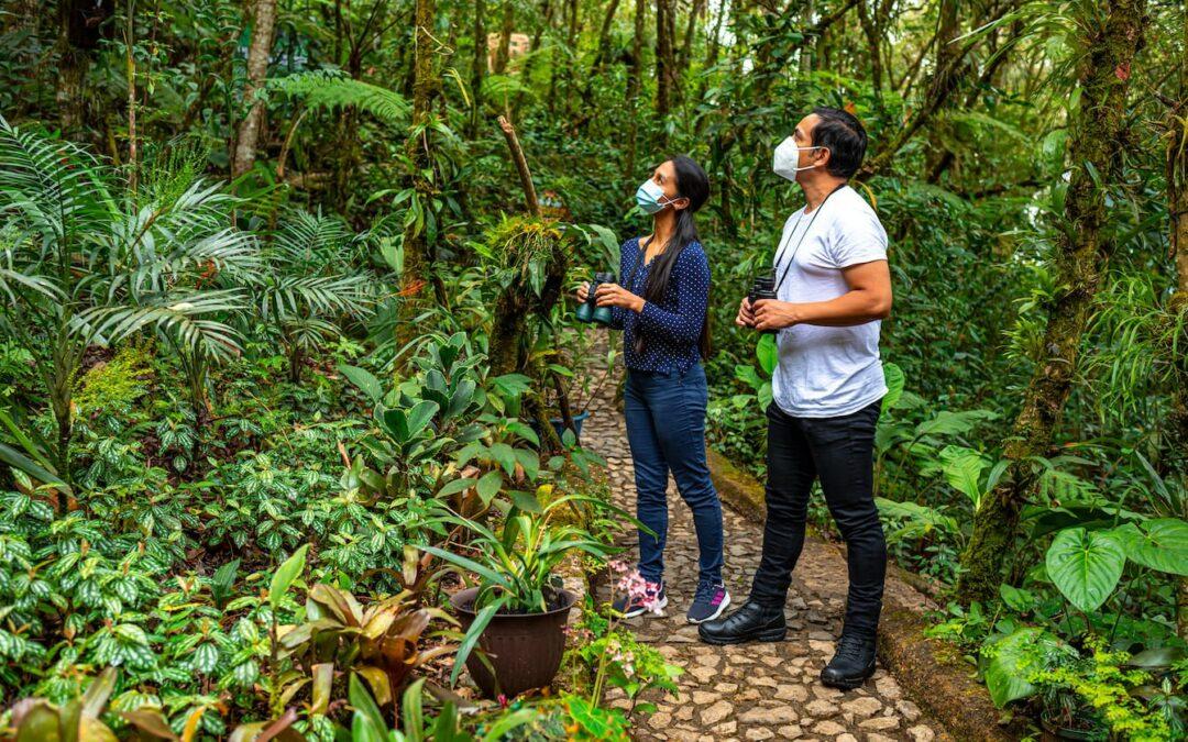 Guatemala busca destacar el potencial del segmento turístico de aviturismo y naturaleza