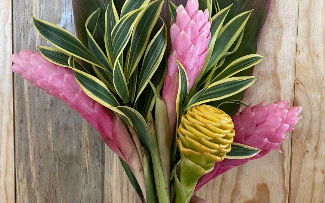 Sector de flores y follajes de Costa Rica muestra su variedad y belleza en talleres de diseño floral