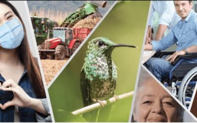 Conglomerado financiero Banco Nacional: Hechos sostenibles para la gente en el 2020
