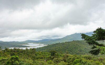 El bosque más nublado de Centroamérica es un poderoso almacén de carbono