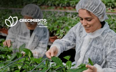 Costa Rica: Programa de Crecimiento Verde apoyará a 37 pymes más con fondos no reembolsables