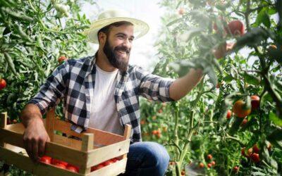 Agricultores de Costa Rica sacan provecho de la tecnología para vender productos 100% certificados como orgánicos